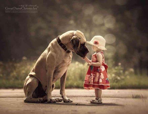帽子を被った少女とおしゃれでかっこいい犬の壁紙