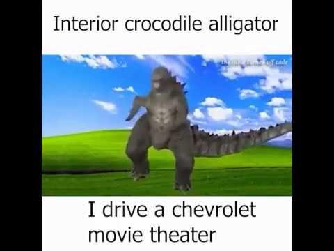 Interior Crocodile Alligator 10 Hour Version Youtube Funny Laugh Crocodile Alligator