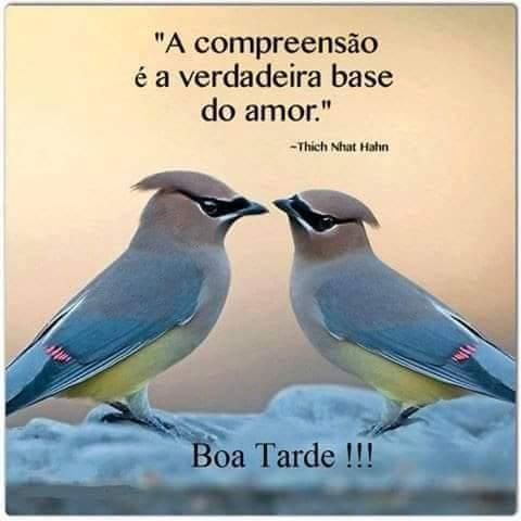 A compreensão é a verdadeira base do amor. então…