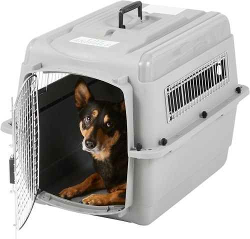 Best Plastic Dog Crate Dog Crate Cat Kennel Plastic Dog Crates
