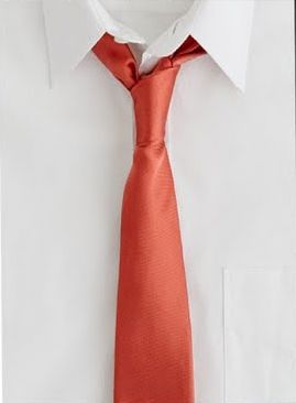 coral tie for honey bunny on VDay yes please I try the jcrew chambray tie on gifts.com I  | #pintowinGifts & @giftsdotcom