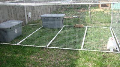 Pvc rabbit tractor homesteading the rabbitry for Pvc rabbit cage