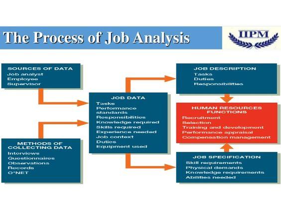 Job analysis HRM BUSINESS INFORMATION Pinterest Job analysis - human resource management job description