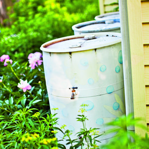 7 Water-Saving Landscaping Ideas for Your Home: Organic Gardening: