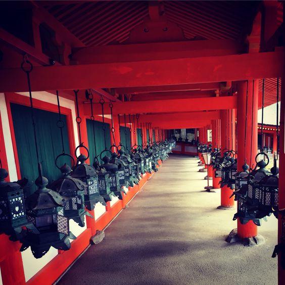 春日大社の釣燈籠 ー 奈良  Hanging lanterns at Kasugataisha shrine in Nara.