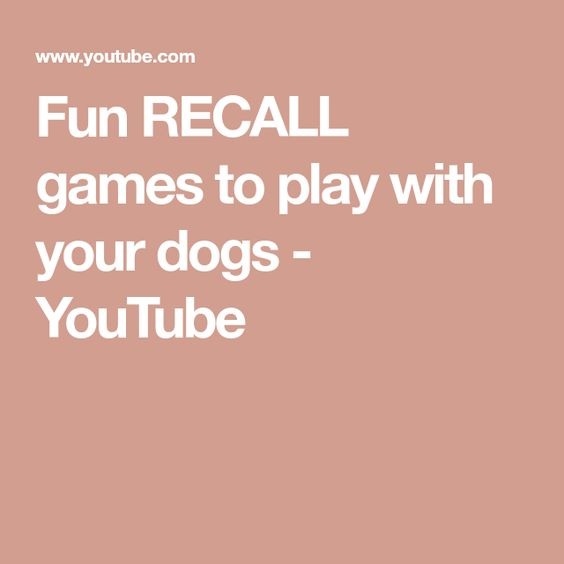 Fun Recall Games To Play With Your Dogs Youtube Games To Play