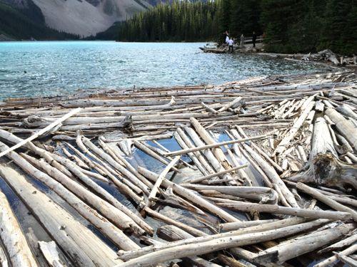 Travel to Lake Louise