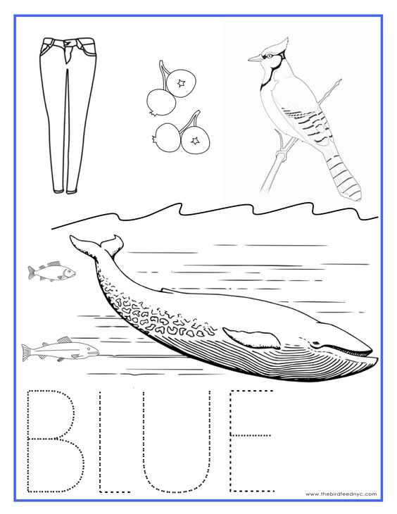blue color activity sheet repinned by printables pinterest coloring. Black Bedroom Furniture Sets. Home Design Ideas