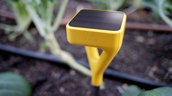 Keep a good thing growing | Edyne | #basileek  #arrosage #jardin