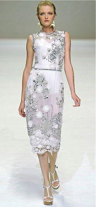 Dolce  Gabbana S/S 2011 RTW