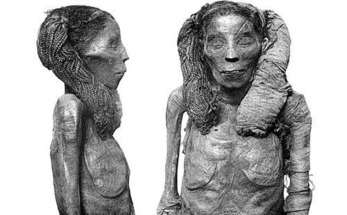 Dame Rai Mummy Lady Rai Ca 1570 1560 1530 Bc In 2020 Cairo Museum Ancient Egyptian Women Egypt Museum