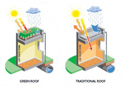 Green Roofs And Great Savings Green Roof Benefits Green Roof Green Roof System
