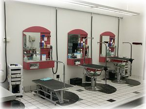 Grooming salon dog grooming salons and salons on pinterest for Grooming shop floor plans
