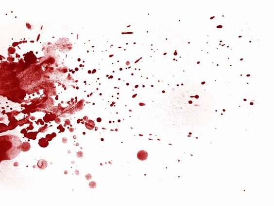 blood spatter - Google Search