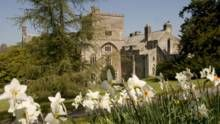 The south front of Buckland Abbey, Devon, with narcissi in the foreground. © NTPL/Brian& Nina Chapple