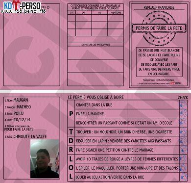 Beliebt Creer votre permis de conduire humoristique personnalise | Projets  JB19