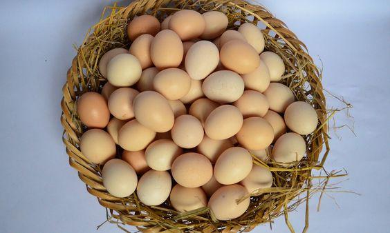 Mặt nạ trứng giúp da đẹp hơn