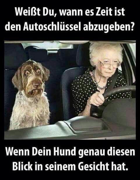 Pin Von Elke Kramer Auf Humor Witzige Bilder Lustige Spruche Bilder Lustige Bilder