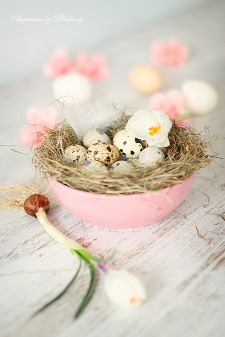 Decorating with nests
