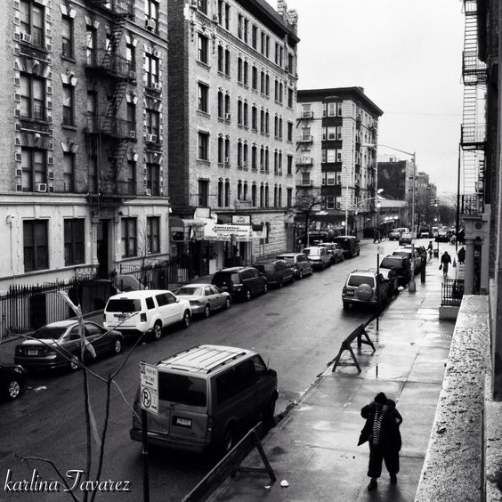 New York; Bronx.  Too many pictures isn't enough.