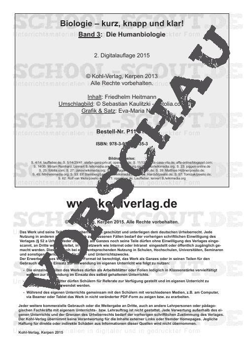 Sexualkunde Arbeitsblätter 6 Klasse - Worksheets