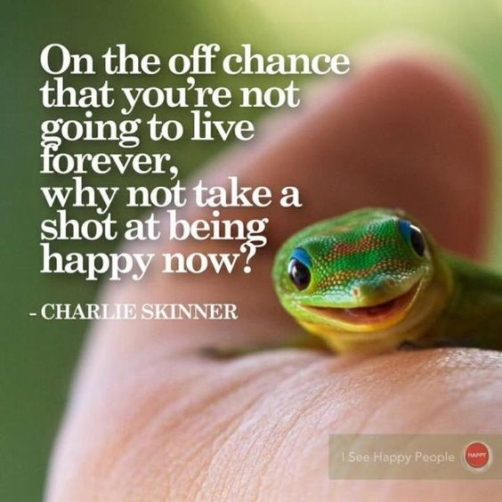 On the off chance that you're not got going to live forever, why not take a shot at being happy now? - Charles Skinner
