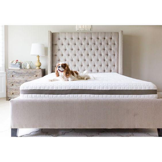 Sleep Evolution Luxury 12 Inch Queen Size Gel Memory Foam Mattress Queen White