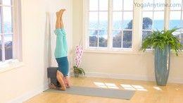 Most Popular Iyengar Videos - Yoga Anytime