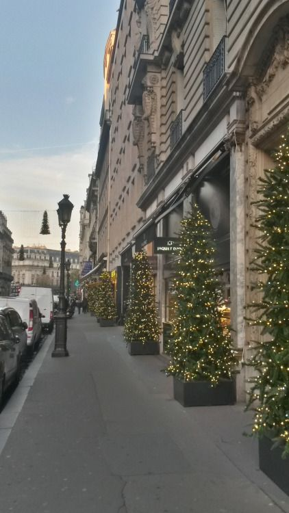 "paris-enphoto: ""- Sapins de Noël / christmas trees, rue de la paix """