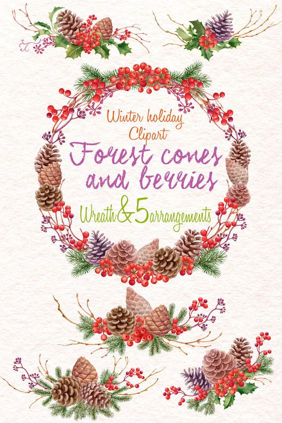Hand Painted clipart - Forest cones and berries - Spruce branches - Christmas…