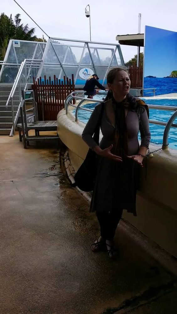 Chained to Dolphin Pool