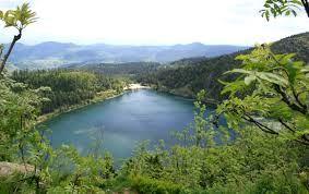 lac noir alsace - Recherche Google