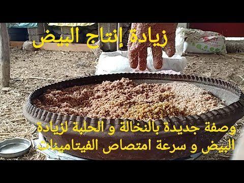 فوائد ستجعلك تاكل الارانب اسبوعياوطعمها المميز من مطبخ ماما تجهيزات رمضان Youtube Food Pork Turkey