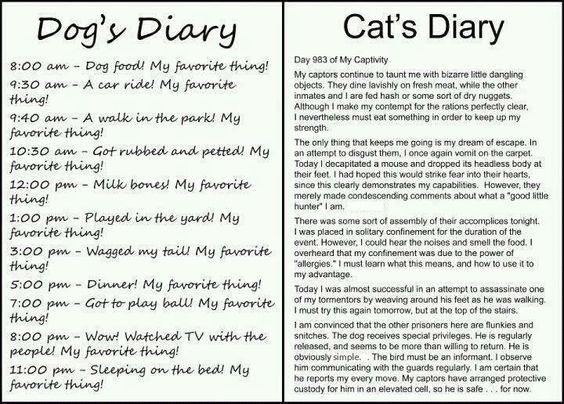 Dog's Diary; Cat's Diary