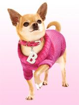 OMIGOD you guys! You can buy your Bruiser a jumper :-)