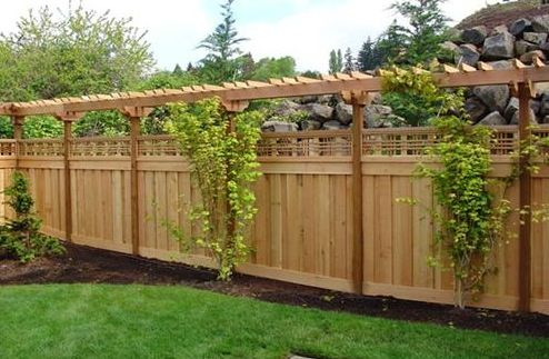 Fence With Trellis And Plantings