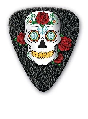 Grover Allman COOL SKULL PICK ON E-BAY