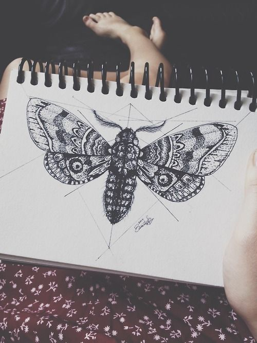 This is the style of illustration I'd be looking for in the Moth chest piece - like a victorian illustration