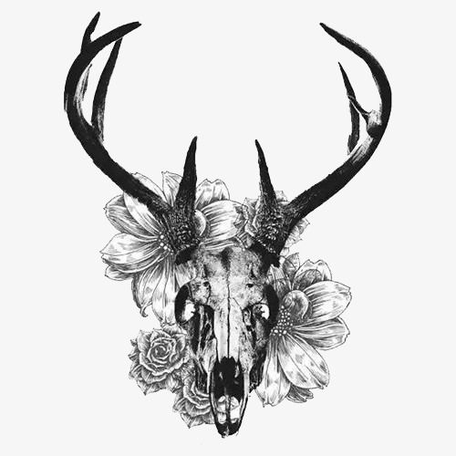 Creative Black And White Deer Skull Png And Psd Deer Skull Tattoos Antler Tattoos Stag Tattoo
