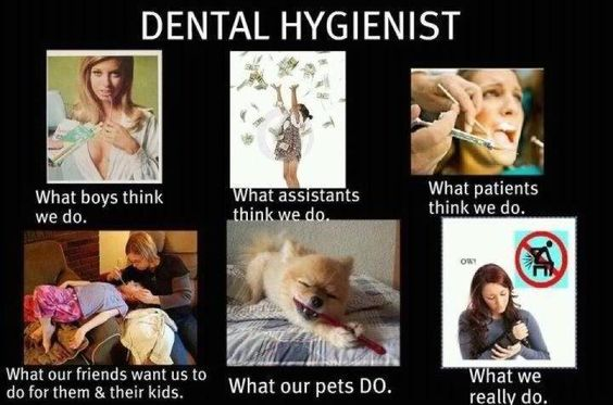 Dental Hygienist whats the most popular