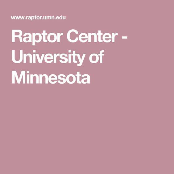 Raptor Center - University of Minnesota