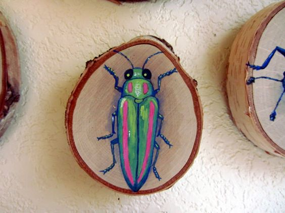 Original Painting - Green and Pink Jewel Beetle on Birch Wood Round by Savannah Mitchell