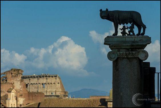 Animali a Roma : la Lupa Capitolina