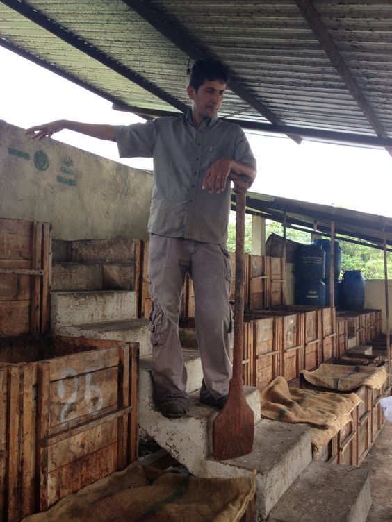 This is a picture of one of Kallari's fermentation centers.