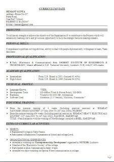 Expert resume write profile