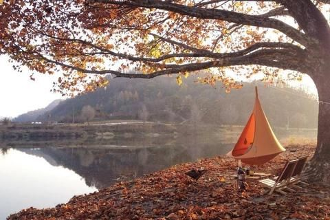 Don T Forget To Head Over To Our Website And Check Out Our Early Black Friday Deals And Use Code Holiday20 For 20 Off Our R Cacoon Hammock Hanging Tent Cacoon