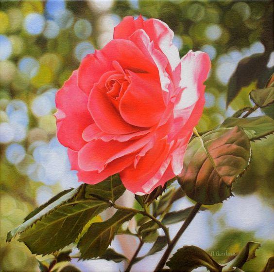 Cuadros Modernos: Pinturas de Rosas Bonitas, Cuadros al Óleo de Alexandra Averbach, Rusia