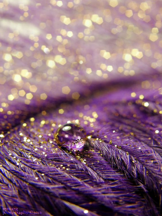 Gold, purple, feather shimmer, fills me with joy
