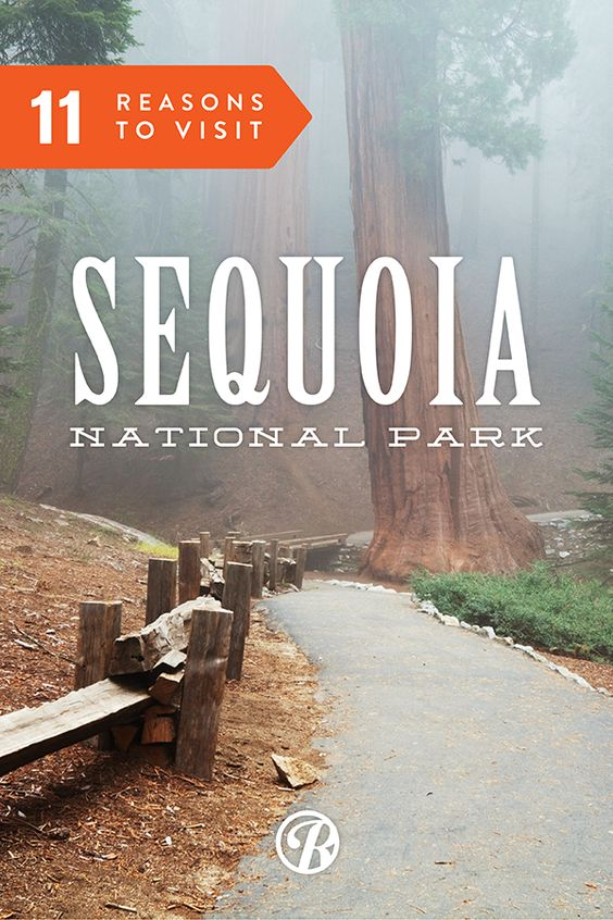 Here are 11 Reasons to Visit Sequoia National Park