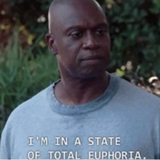 captain holt b99